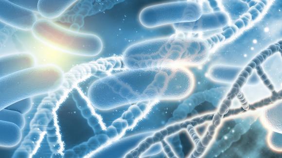 Trwają badania nad nowymi lekami na choroby bakteryjne