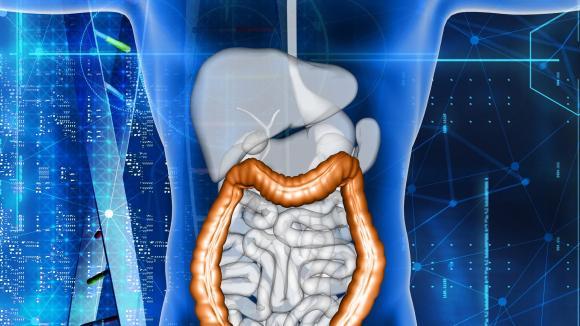 FDA zarejestrowała ozanimod w leczeniu pacjentów z wrzodzejącym zapaleniem jelita grubego