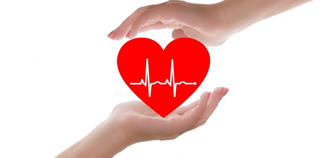 20 faktów na temat serca