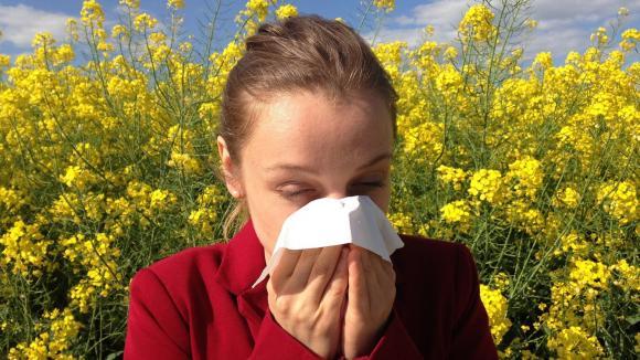 Alergia - fakty i mity